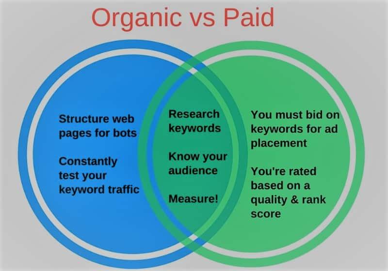 Paid-vs-organic-search-min