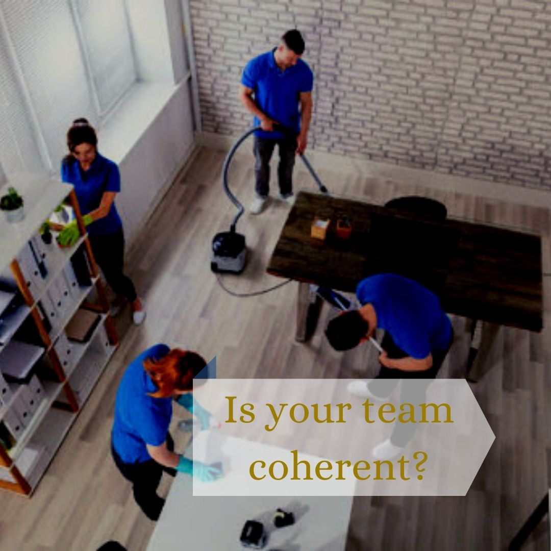 organized-commercial-cleaning-team